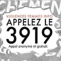 Droits des femmes - La journée internationale pour l'élimination des violences faites aux femmes du 25 novembre 2016 dans la région Hauts-de-France