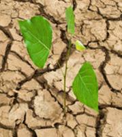 Etat de catastrophe naturelle - Recours gracieux