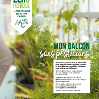Mon balcon sans pesticides...