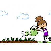 Le jardin réinventé par les élèves de l'école du Drooghout