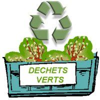 -Aire d'apport volontaire des déchets verts-