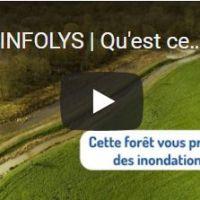 Infolys : La forêt de Nieppe, une installation naturelle et protectrice des inondations sur le bassin versant de la Lys